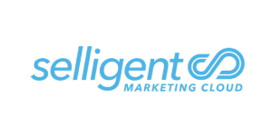 Selligent is a high budget but high performance tool